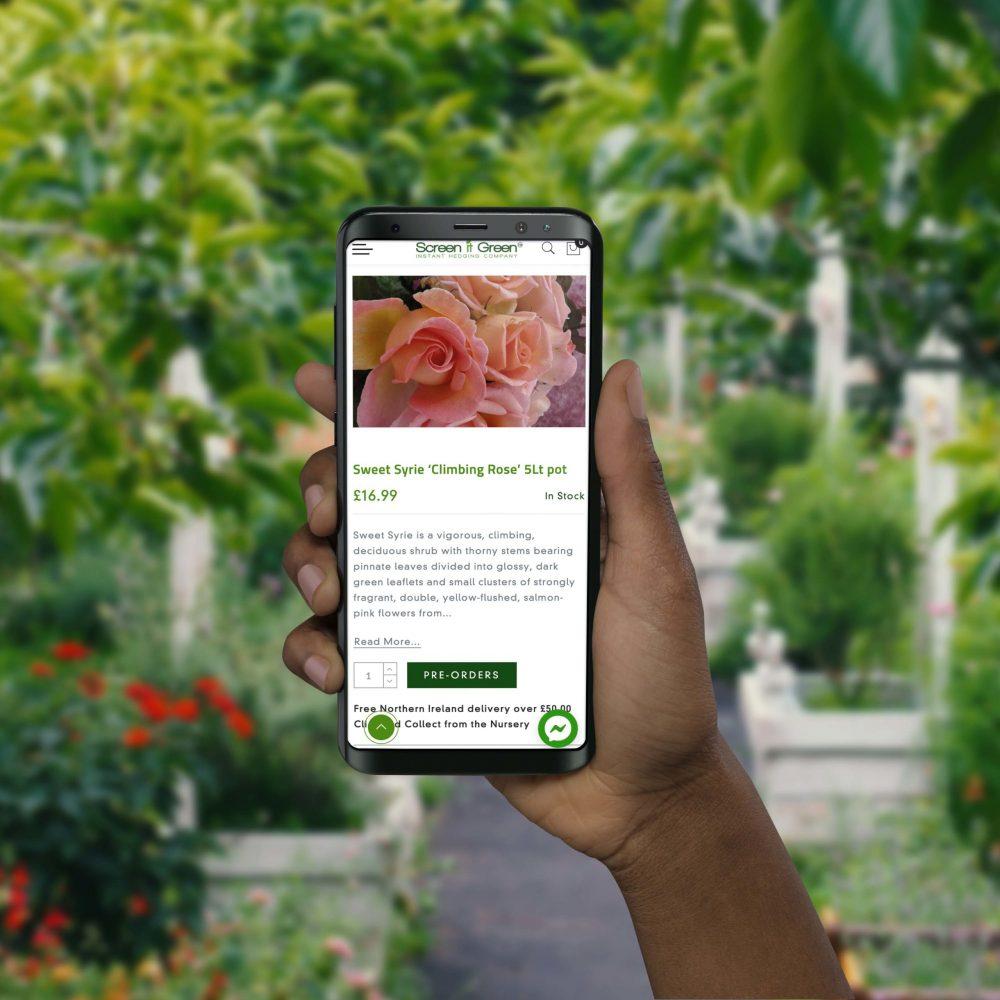 screen-it-green-mobile